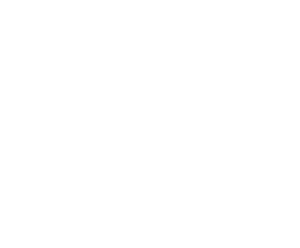 logo playeng